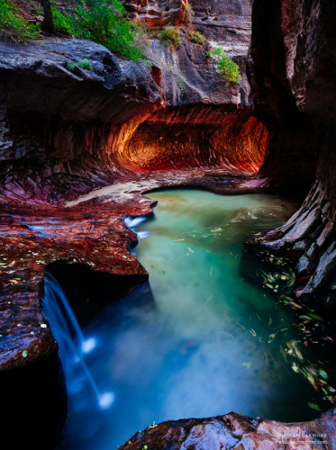Zion Subway Photography Guide